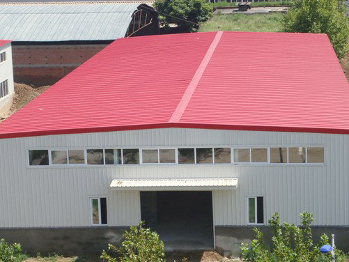 钢结构厂房(单层彩钢板外围.